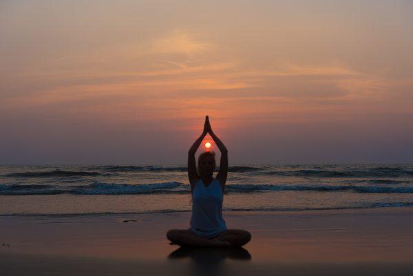 alex beach yoga therapy training india