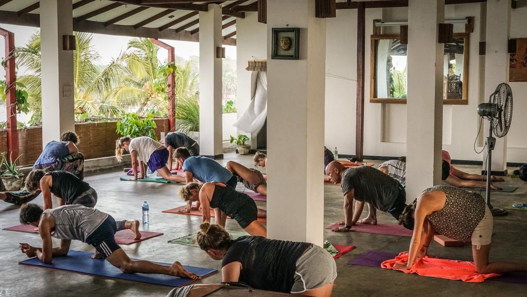practice 2 yin yoga ttc sri lanka