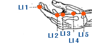 Description: https://d1dvupm0dmwrkj.cloudfront.net/assets/files/2485/li_meridian_1-5.gif