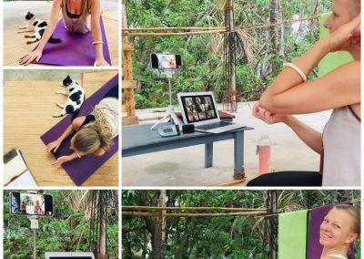 online collage yin yoga teacher training