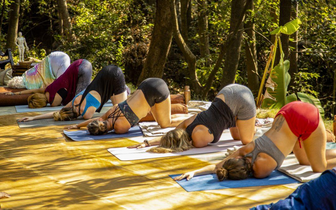 Yin Yoga: A Love Letter To Stillness